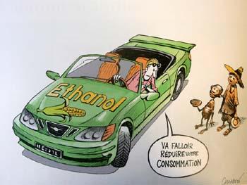 L'économie verte mange aussi la planète dans Energie agrocarburants